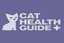 Cat Skin Allergies Diagnosis and Treatment